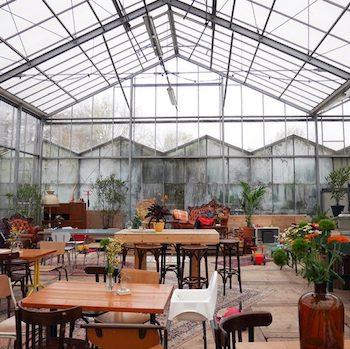 Kweekcafe-Haarlem-04-650x488